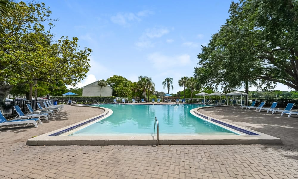 Our Apartments in Tampa, Florida offer a Swimming Pool