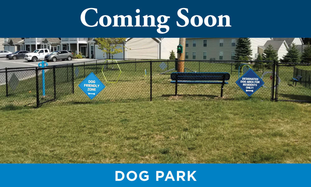 Park at Lake Magdalene Apartments & Townhomes offers a Dog Park in Tampa, Florida