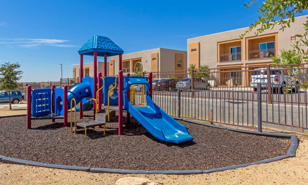 Playground at Sonoma Palms