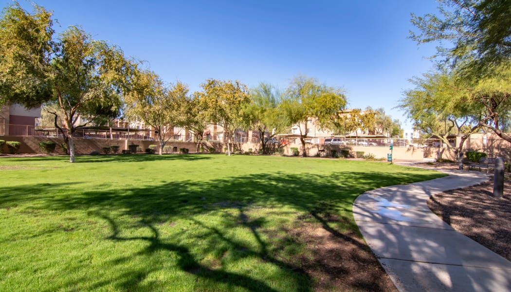 Beautifully maintained landscaping at The Residences at Stadium Village in Surprise, Arizona
