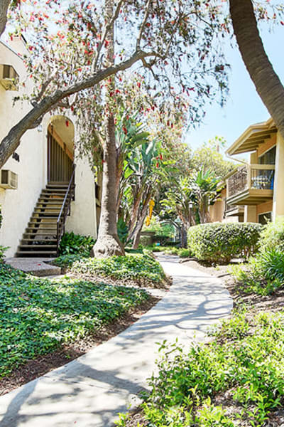 Professionally maintained landscaping throughout the community at Mediterranean Village Apartments in Costa Mesa, California