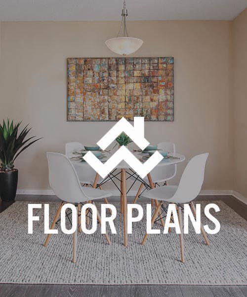 View Prospect Place floor plans.