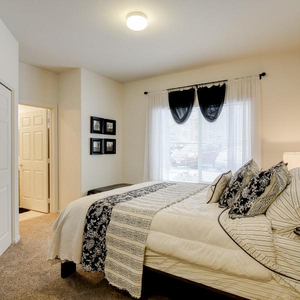 Master bedroom with plush carpeting at The Dakota Apartments in Lacey, Washington
