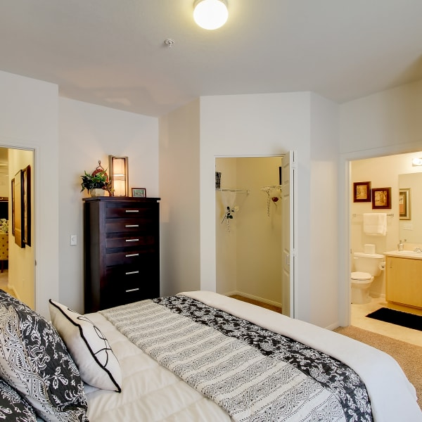 Master bedroom with a walk-in closet at The Dakota Apartments in Lacey, Washington