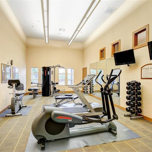 Gym with individual workout stations and TVs at Laguna Creek Apartments in Elk Grove, California