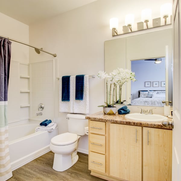 Bathroom with plenty of cabinets and an oval tub at The Meadows in Tacoma, Washington