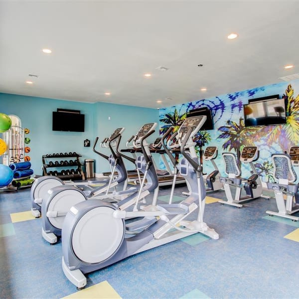 Resident gym with individual work stations at The Palms at Morada in Stockton, California