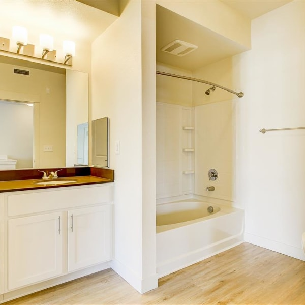 Large bathroom with a vanity mirror and oval tub at The Palms at Morada in Stockton, California