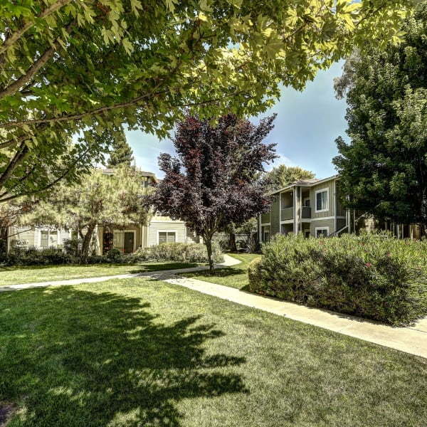 Beautifully landscaped walk ways at Monticello at Southport in West Sacramento, California