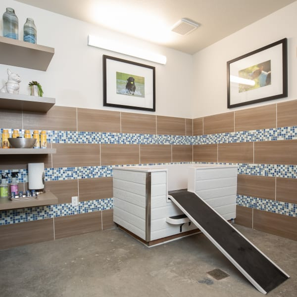 The Alcott offers a Pet Spa | Pet Friendly Apartments in Downtown Denver, CO