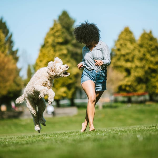 Resident and her dog happily playing on the green grass outside their home at Legends at White Oak in Ooltewah, Tennessee