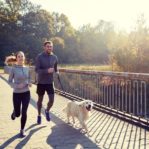 Couple on a run with their dog in Peoria, Arizona near Ocio Plaza Del Rio