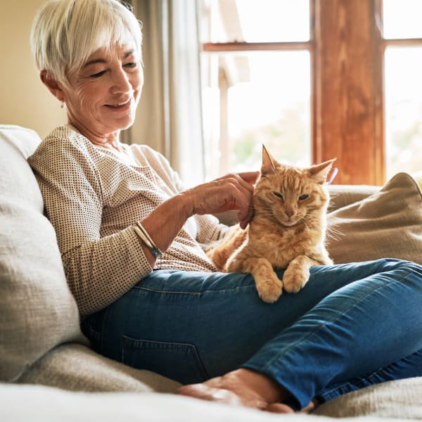 A woman with a cat on he lap at The Atrium at Carmichael in Carmichael, California.