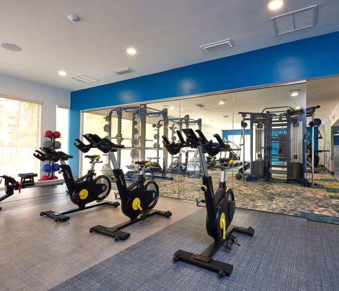 Community amenities at Aliro in North Miami, Florida