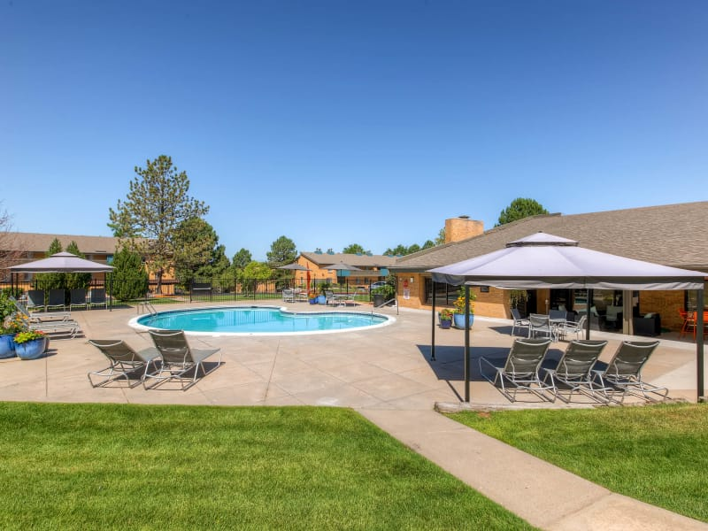 Swimming pool area at 3300 Tamarac in Denver, Colorado