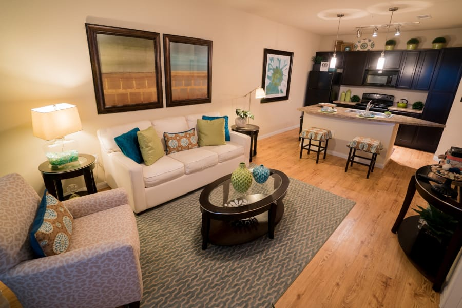 Luxury living room and kitchen at Queenston Manor Apartments in Houston, Texas
