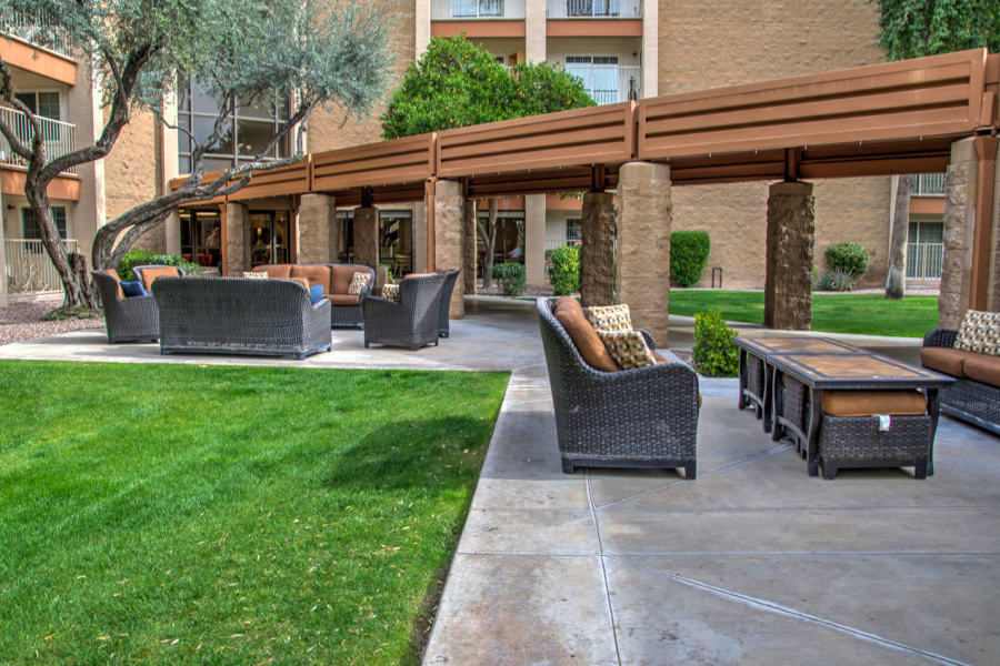Beautifully maintained grass and landscaping in one of the outdoor common areas at Bella Vista Senior Living in Mesa, Arizona