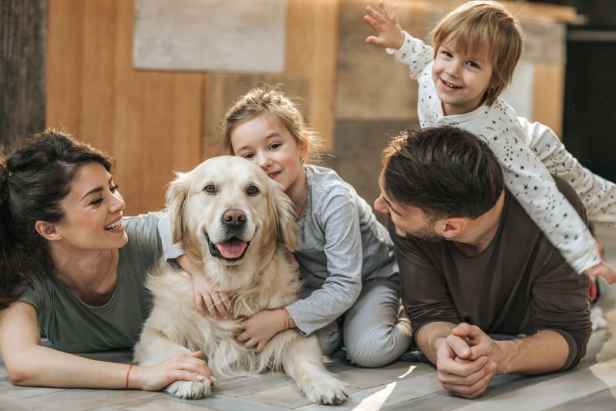 Happy dog and family in their townhome at The Townhomes at BlueBonnet Trails in Waxahachie, Texas