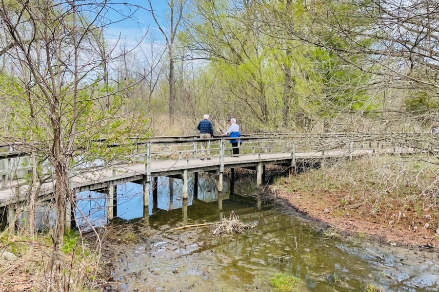 Outing to the Matthaei Botanical Gardens and Nichols Arboretum