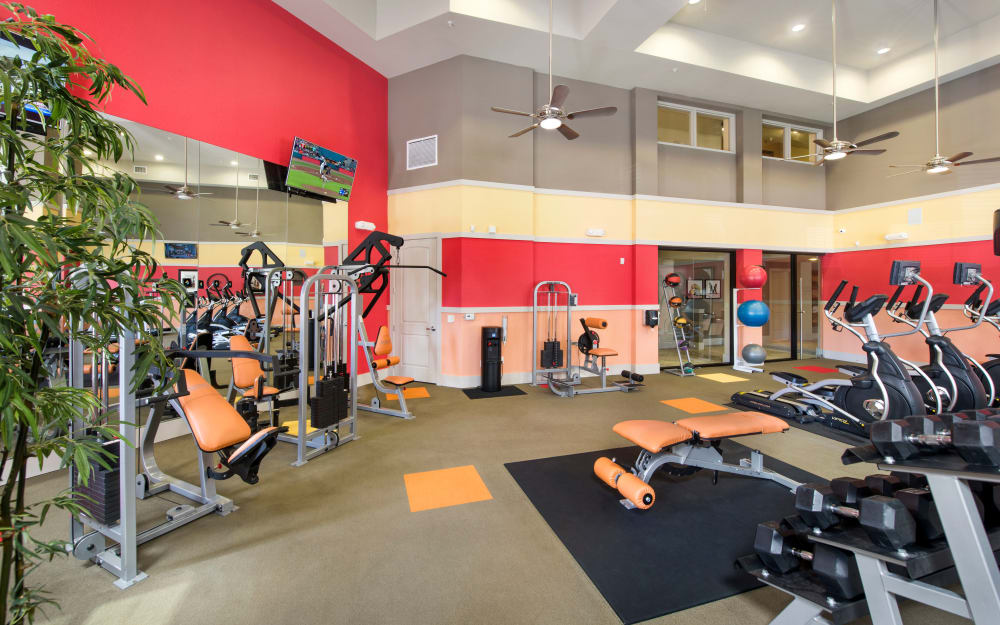 Well-equipped fitness center at The Courtney at Universal Boulevard in Orlando, Florida
