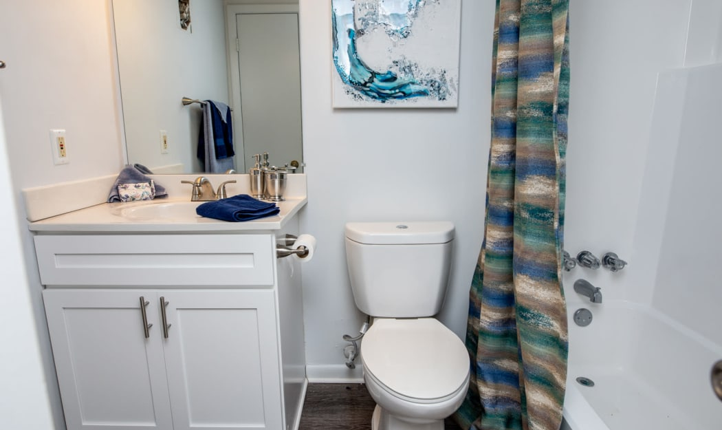 Bathroom at The Residences at Forest Grove in Newport News, Virginia