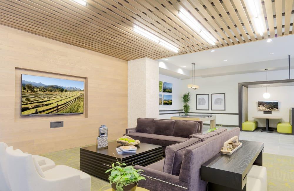 Luxury living room at apartments in Denver, Colorado