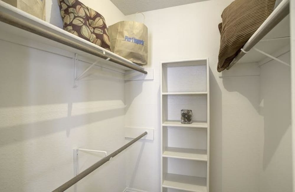 Large walk-in closet at Allegro on Bell in Antioch, Tennessee