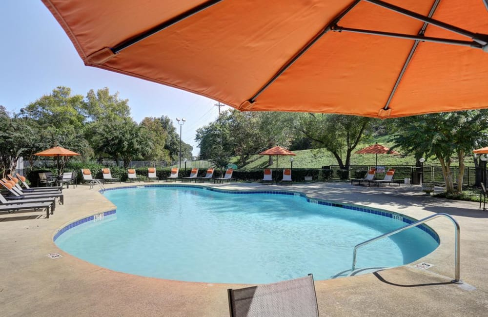 Swimming pool at Allegro on Bell in Antioch, Tennessee