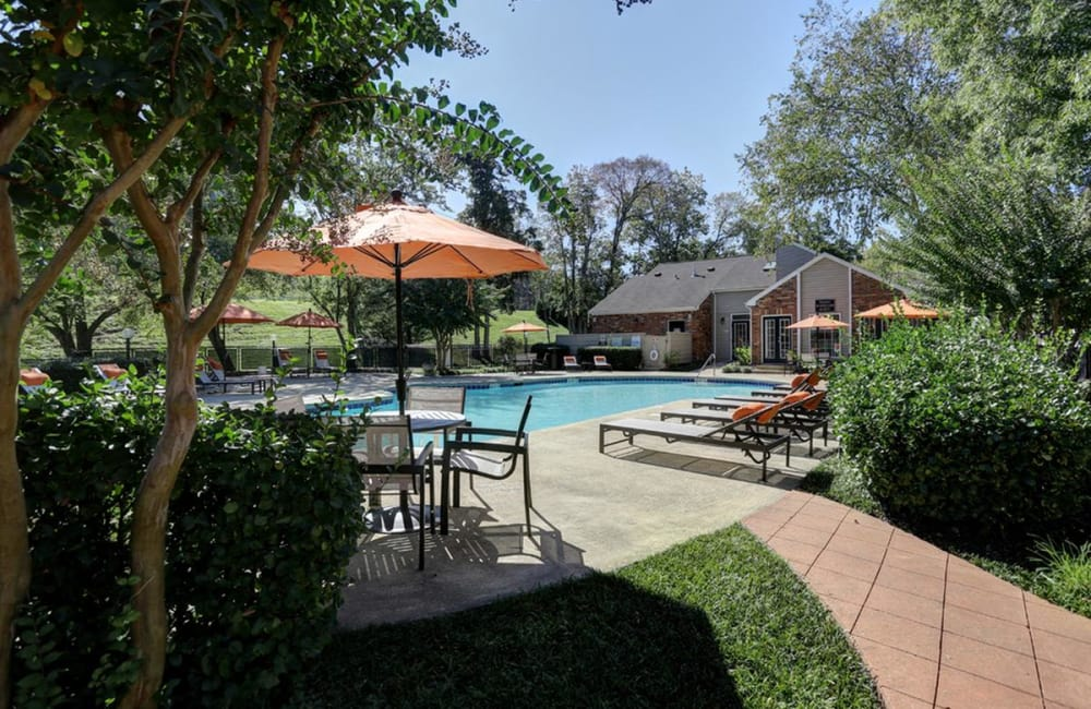 Courtyard with large swimming pool on a beautiful sunny day at Allegro on Bell in Antioch, Tennessee