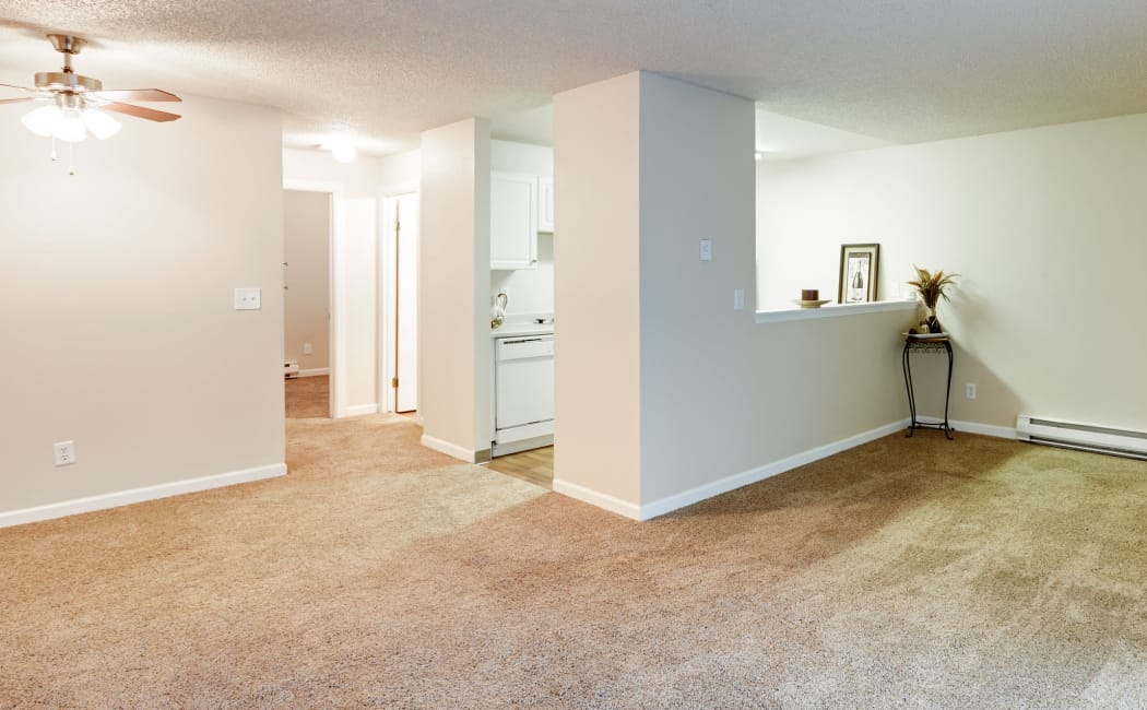 Spacious living room with plush carpet in model home at Arbor Chase Apartment Homes