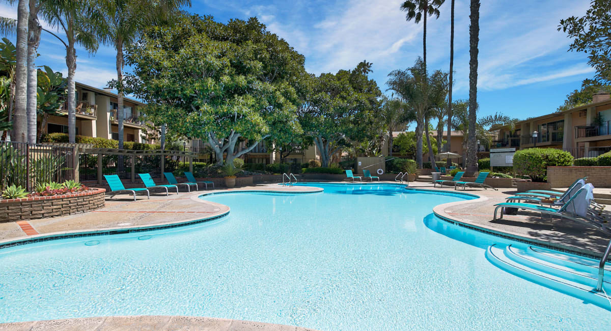 Palm trees and lounge chairs around the pool on a beautiful day at Mediterranean Village Apartments in Costa Mesa, California