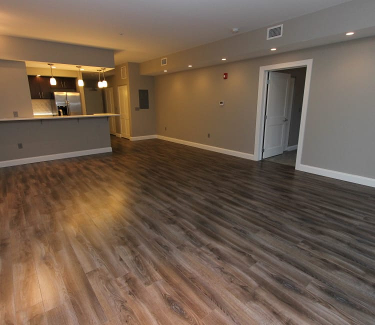770 Elmwood Apartments floor plans in Buffalo, NY