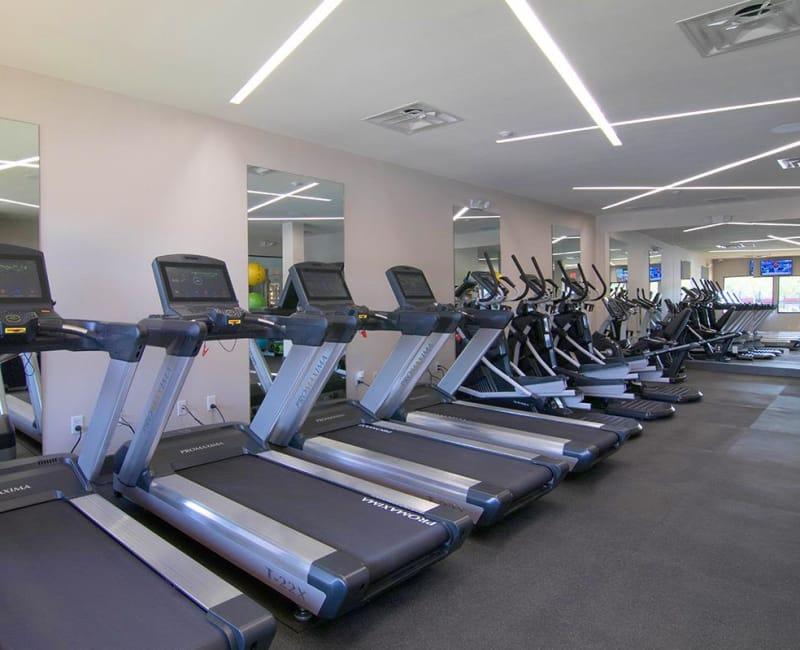 Treadmills at 2111 Holly Hall in Houston, Texas