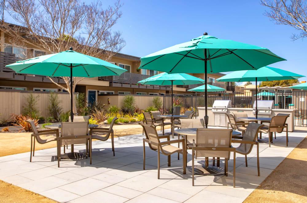 Enjoy the outdoor patio at Mosaic Hayward in Hayward, California