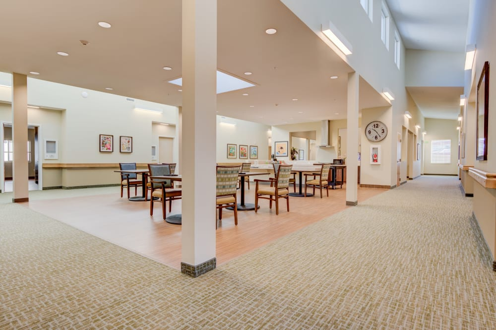 Dining Hall at Juniper Springs Senior Living