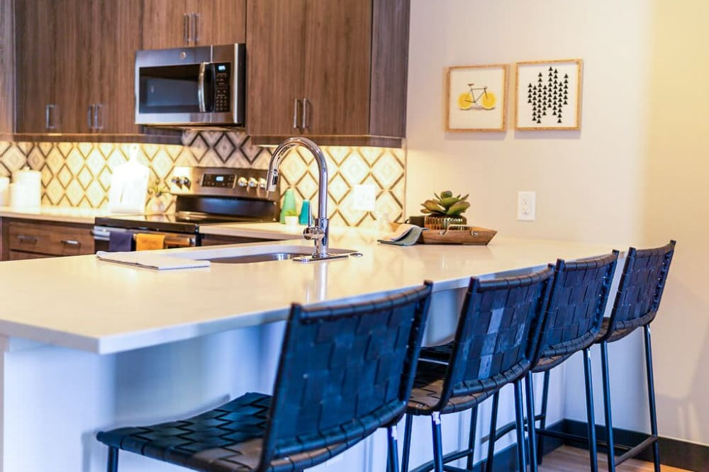 View the floor plans at The Local Apartments in Tempe, Arizona