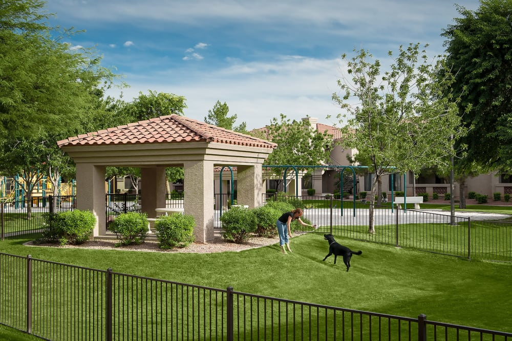 View the amenities at San Pedregal in Phoenix, Arizona