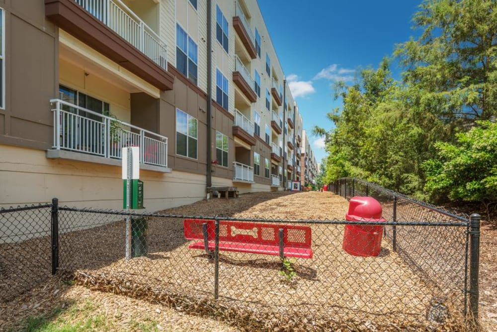Enjoy apartments with a spacious dog park at Manor Six Forks