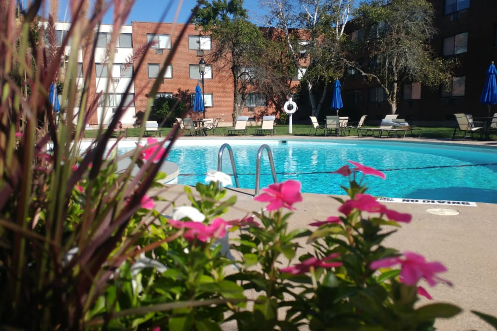 Flowers in bloom by the pool at Westgate West Hartford in West Hartford