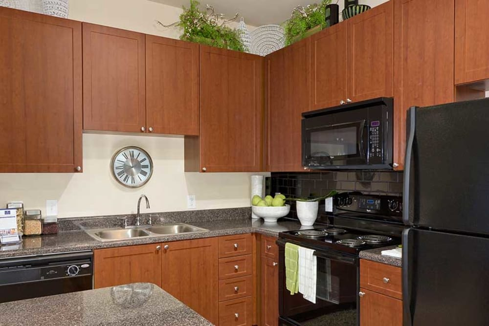 Nice appliances and plenty of counter space at The Atlantic Aerotropolis