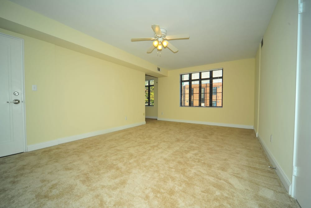 Carpeted living room at Montgomery Arms Apartments