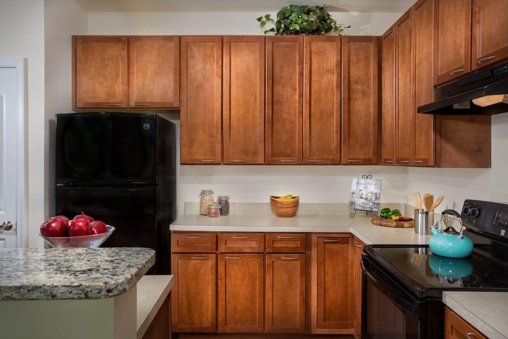 Updated kitchen at Monarch Mills