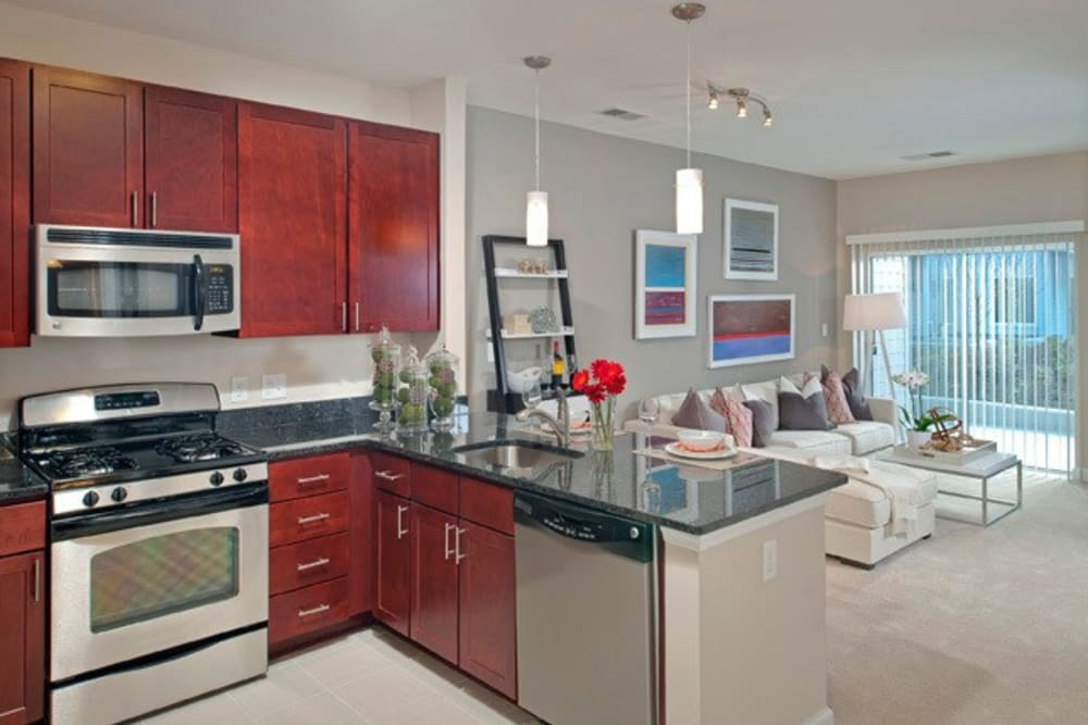 Spacious kitchen with nice breakfast bar at The Galaxy in Silver Spring, Maryland
