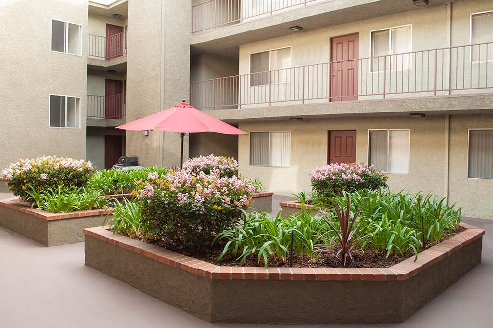 Courtyard with planters at The Hallmark in Sherman Oaks, CA