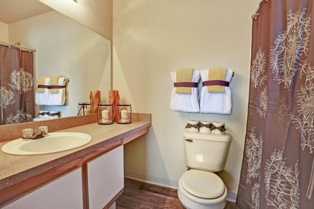 Bathroom at The Pines at Castle Rock Apartments in Castle Rock, Colorado