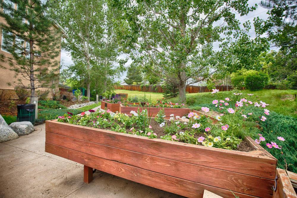 Garden at Someren Glen