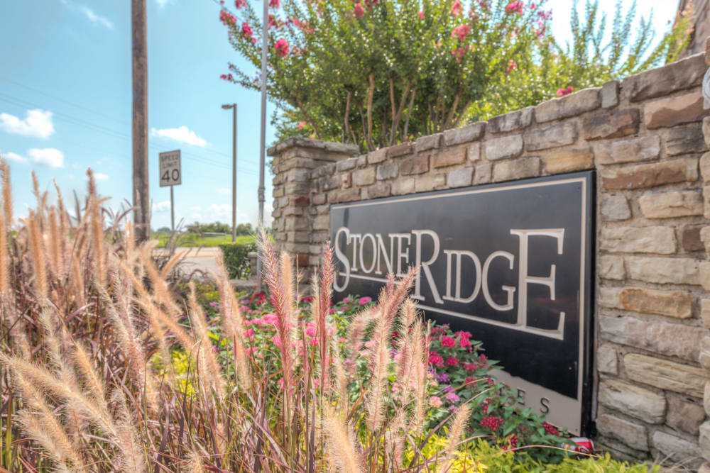 Stone Ridge Apartments apartments in Mesquite, TX
