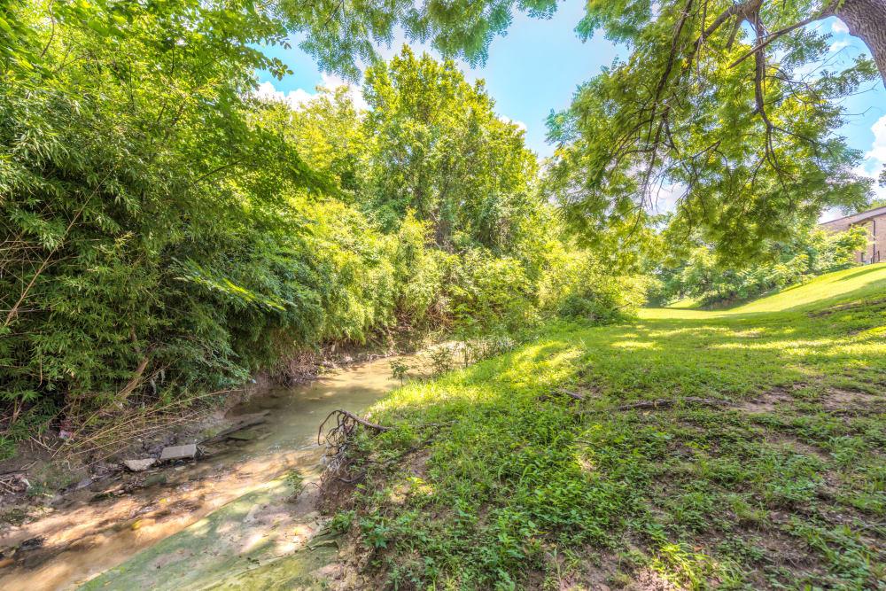 Creek near Wooded Creek