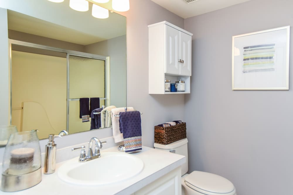 Bathroom at Abrams Run Apartment Homes in King of Prussia, PA