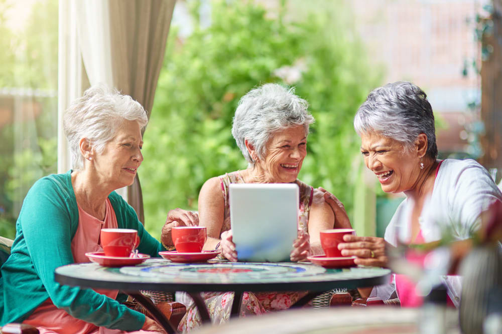 Independent living residents laugh while enjoying tea together at Comfort Residence